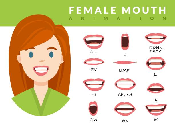 Female mouth animation. Womans talking mouths lips for cartoon character animation and english pronunciation. Sync speech expression vector set Female mouth animation. Womans talking mouths lips for cartoon character animation and english pronunciation. Sync speech expression vector face elements set for talk and sound alphabet characters stock illustrations