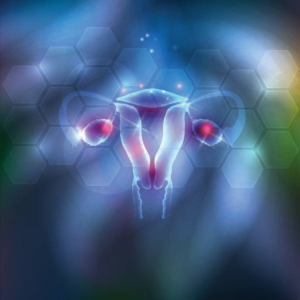 weibliche gebärmutter abstrakten hintergrund - pcos stock-grafiken, -clipart, -cartoons und -symbole