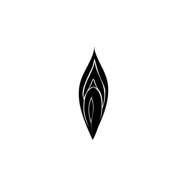 symbol der weiblichen vagina. detaillierte symbol der teile des menschlichen organen symbol. premium-qualität-grafik-design. eines symbols sammlung für webseiten, webdesign, mobile-app - eizelle stock-grafiken, -clipart, -cartoons und -symbole