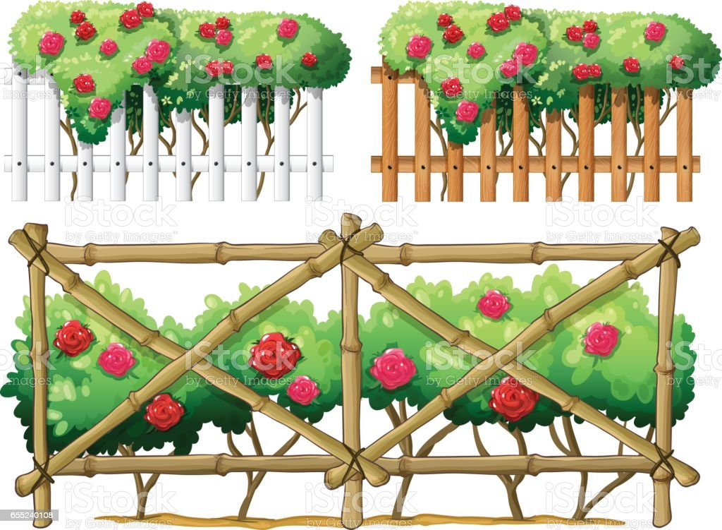 Fence Design With Roses Stock Vector Art More Images Of Art