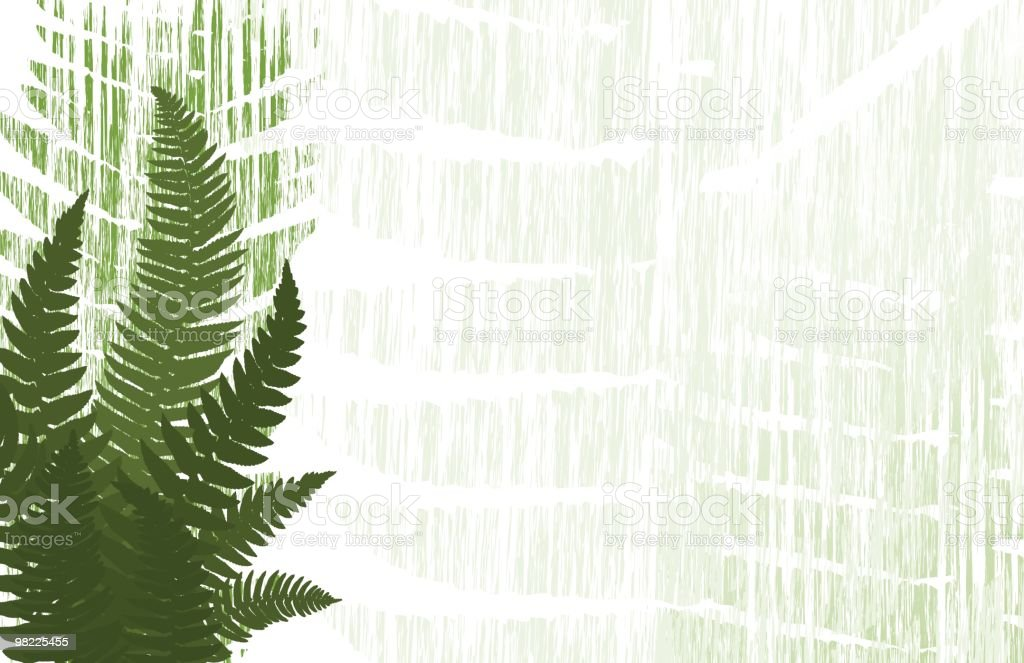 Fern Collage Background royalty-free fern collage background stock vector art & more images of abstract