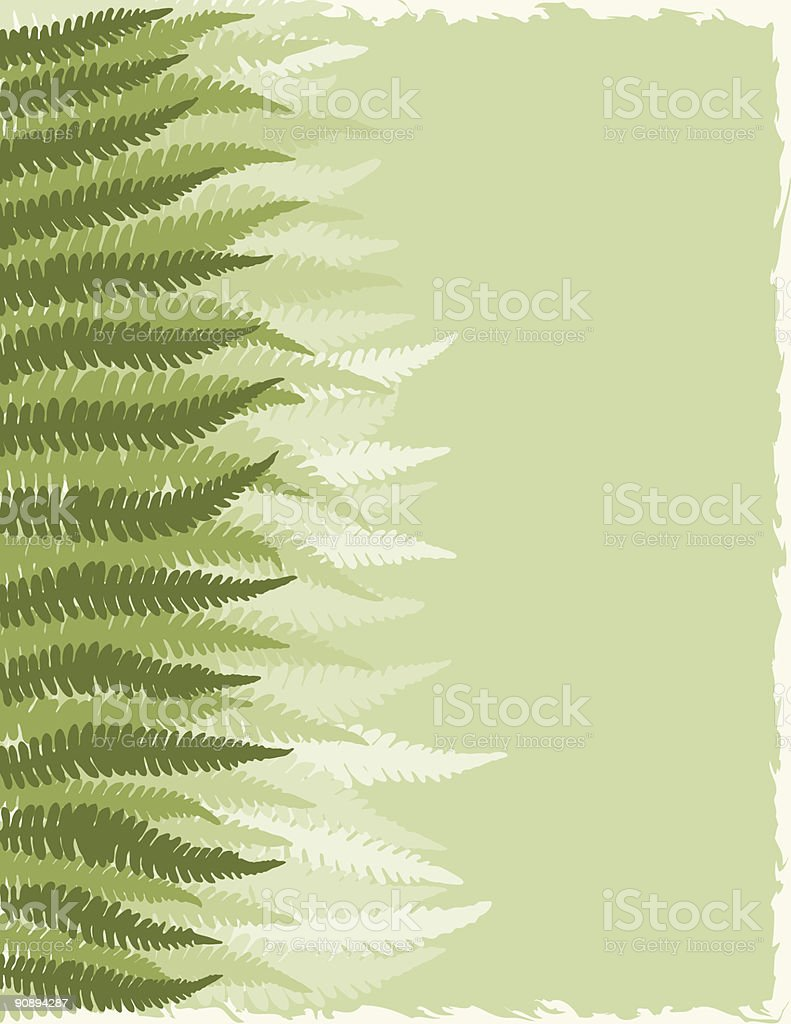 Fern Fronds Background royalty-free fern fronds background stock vector art & more images of abstract