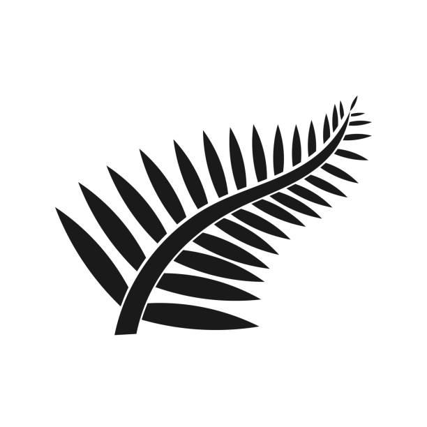 Fern leaf icon Fern leaf icon. New Zealand symbol illustration fern stock illustrations