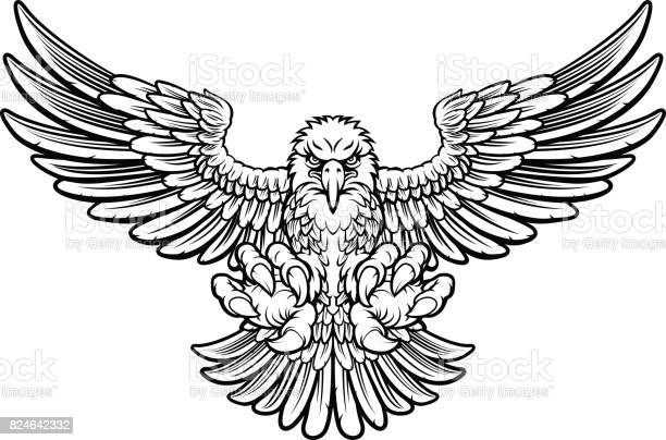 Free hawk bird Images, Pictures, and Royalty-Free Stock