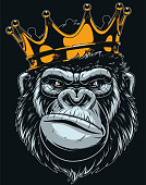 Vector illustration, ferocious gorilla head on with crown, on black background.