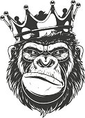 istock Ferocious gorilla head. 967736066