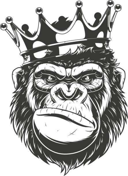ilustraciones, imágenes clip art, dibujos animados e iconos de stock de cabeza de gorila feroz. - gorila