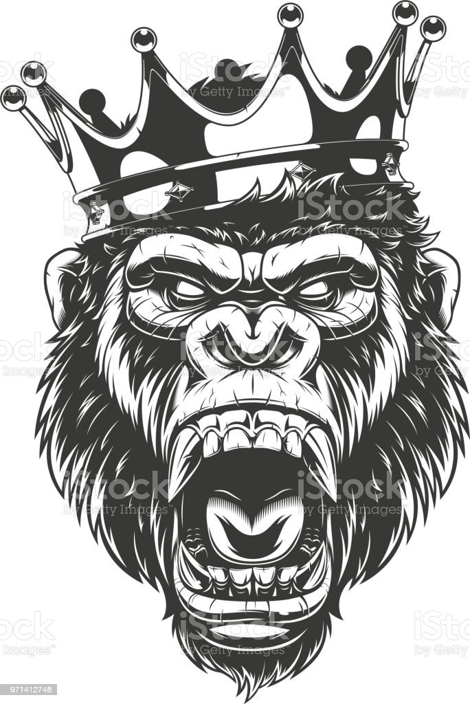 Ferocious Gorilla Head Royalty Free Stock Vector Art Amp More Images