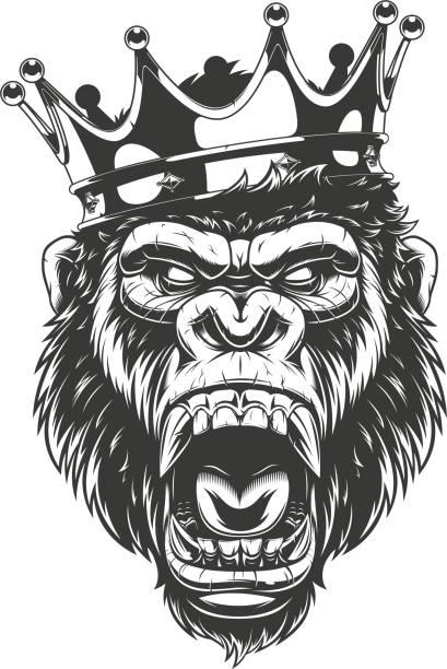 ilustraciones, imágenes clip art, dibujos animados e iconos de stock de cabeza de gorila feroz - gorila