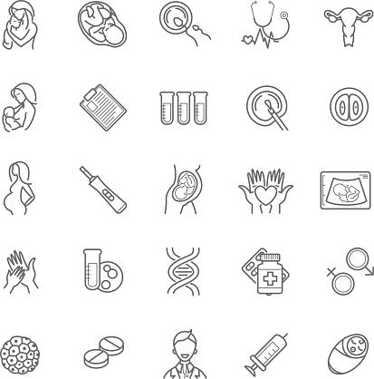 fertilization, pregnancy and motherhood vector icon set. Gynecol