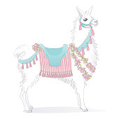 Vector sketch style illustration of a white llama dressed up for birthdays, weddings, or rides. The llama is wearing a blue saddle with a pink striped blanket and also adorned with flowers