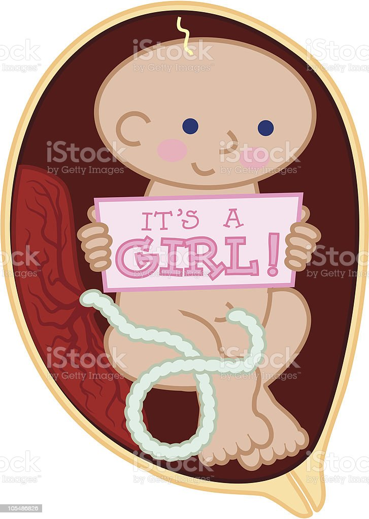 Fetus holding 'It's a Girl!' sign royalty-free stock vector art
