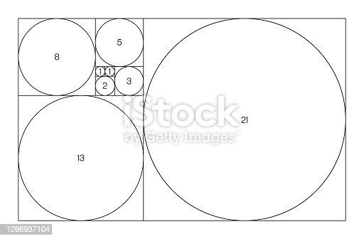 Fibonacci sequence of circles. Golden ratio geometric concept. Vector illustration.