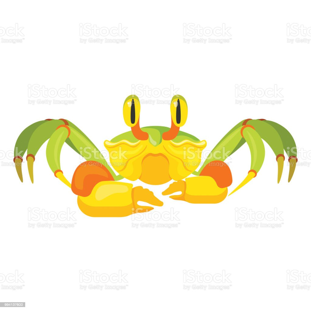 Fiddler Crab With Five Pair Of Legs Vector Illustration Stock Illustration  - Download Image Now