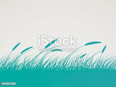 Grass or wheat field silhouette background.