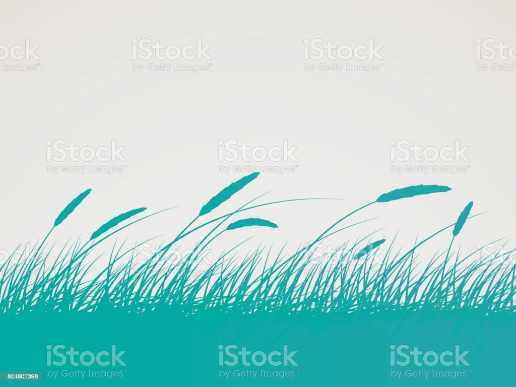 Field Background vector art illustration