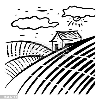 istock Field landscape hand drawn vector illustration vol 2. Isolated on white background. 1162650768