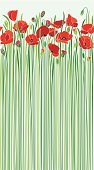 An original artwork vector illustration of a field of scarlet poppies in early spring. Light-blue sky and springtime flowers with tall green stems. Vertical portrait composition on a light-blue background, that may serve as a postcard, flyer, poster, wallpaper, seamless pattern that brings freshness, Remembrance, Day, commemoration, peace.