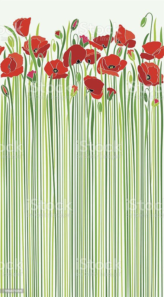 poppies patrón - ilustración de arte vectorial