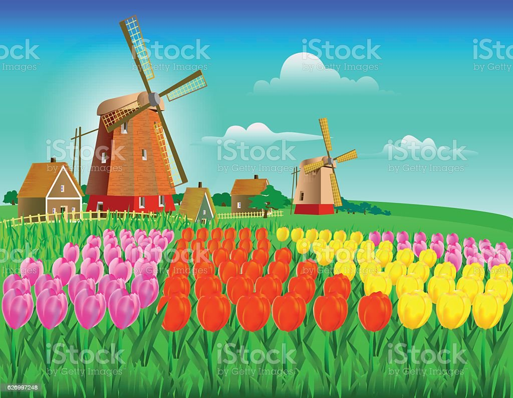 field of tulips in yellow, pink and red flowers with vector art illustration