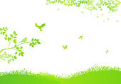 Field silhouette Background and Flying birds, Flowering plant, Sunbeams