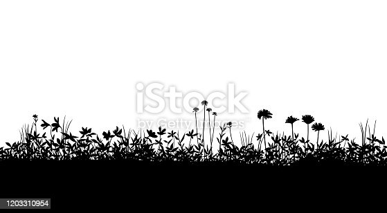 field silhouette Background material, Flowering plant