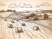 Field with haystacks.