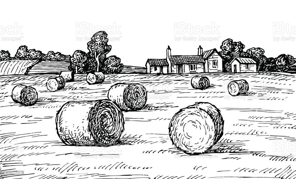 Field with haystacks. vector art illustration