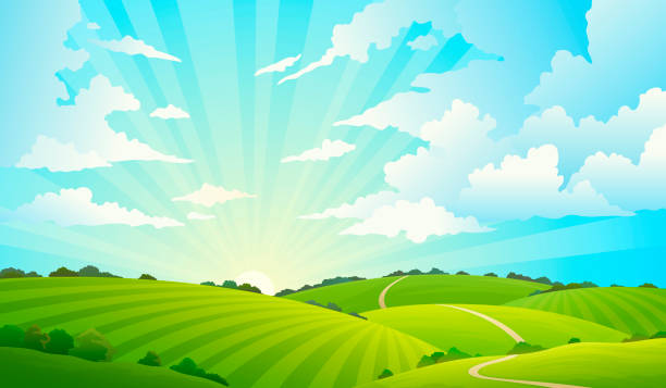 Fields landscape. Scenic green hills nature sky horizon meadow grass field rural land agriculture grassland Fields landscape. Scenic green hills nature sky horizon meadow grass field rural land agriculture grassland. Summer vector background hill stock illustrations
