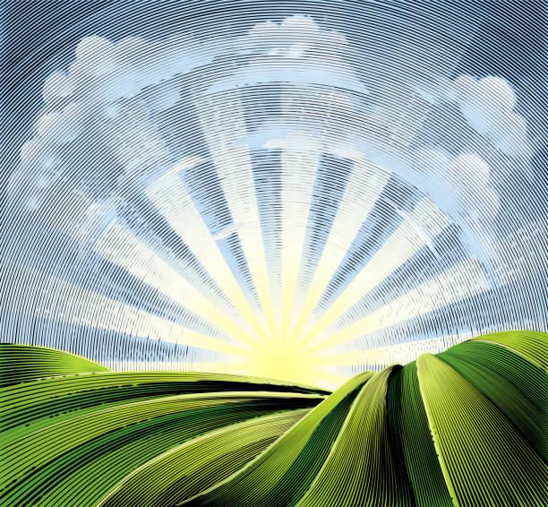 stockillustraties, clipart, cartoons en iconen met velden, glooiende heuvels en zon gegraveerd etsen - twilight