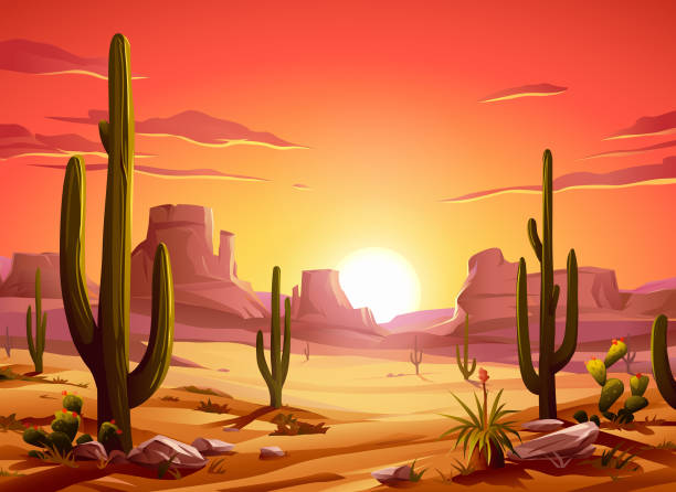 fiery desert sunset - desert stock illustrations
