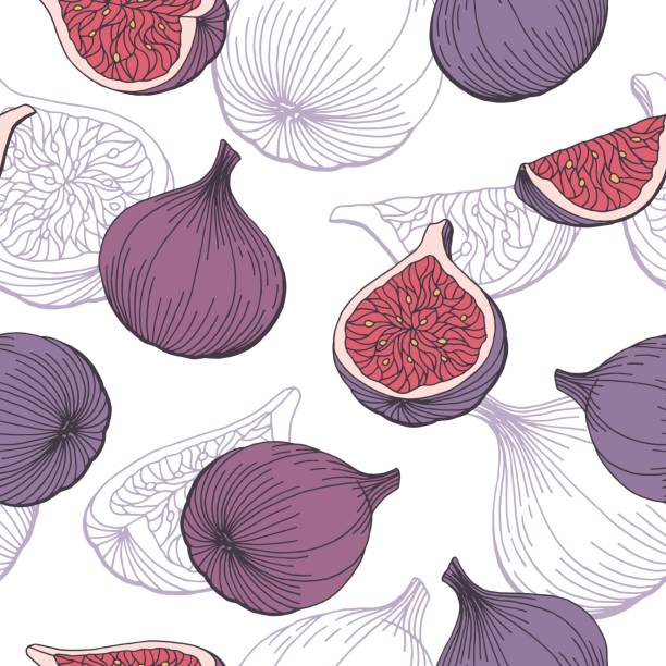 Fig fruit graphic color seamless pattern sketch illustration vector Fig fruit graphic color seamless pattern sketch illustration vector fig stock illustrations