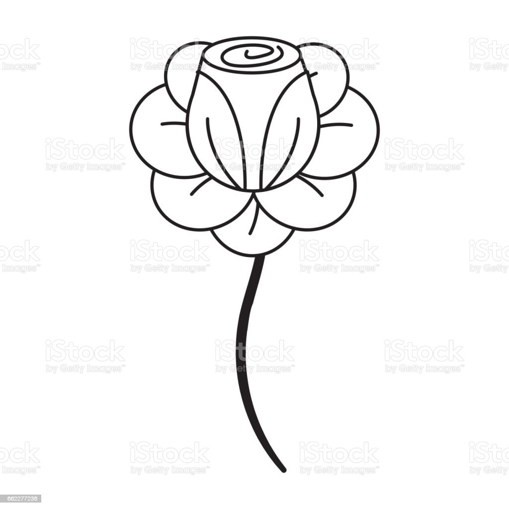 figure beauty rose with petals plant royalty-free figure beauty rose with petals plant stock vector art & more images of art