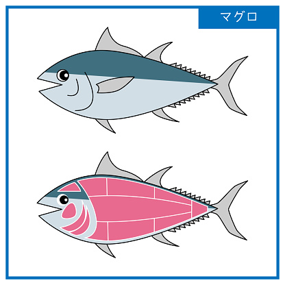 Figure Simple illustration of cute tuna and its parts Vector