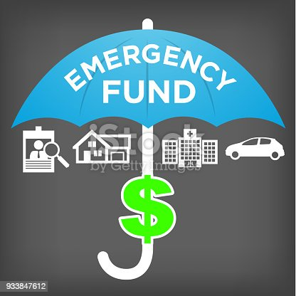 Financial Emergency Fund Icon Savings