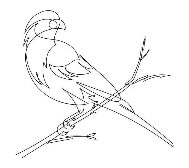 stockillustraties, clipart, cartoons en iconen met finch doorlopende lijn vectorillustratie - neerstrijken