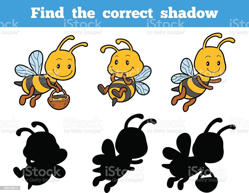 Find the correct shadow about bees – Vektorgrafik
