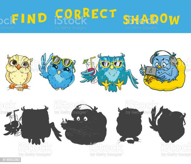 Find the correct shadow educational game for kids with owls vector vector id918950382?b=1&k=6&m=918950382&s=612x612&h=rfavtkz4ymgewt v 5lbju 1hk ka uiizqzn31mimw=