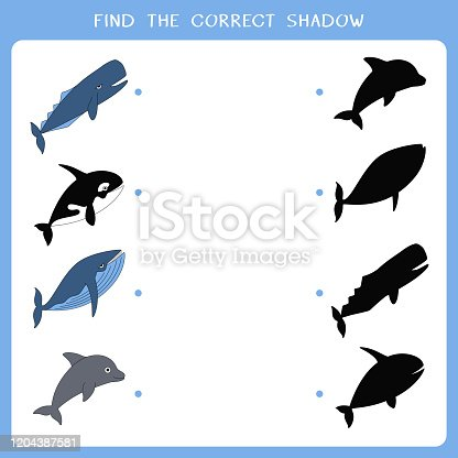 Find the correct shadow for whales. Vector worksheet of simple educational game for kids