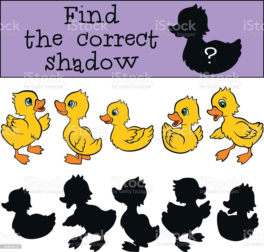 Find the correct shadow. Little cute ducklings. vector art illustration