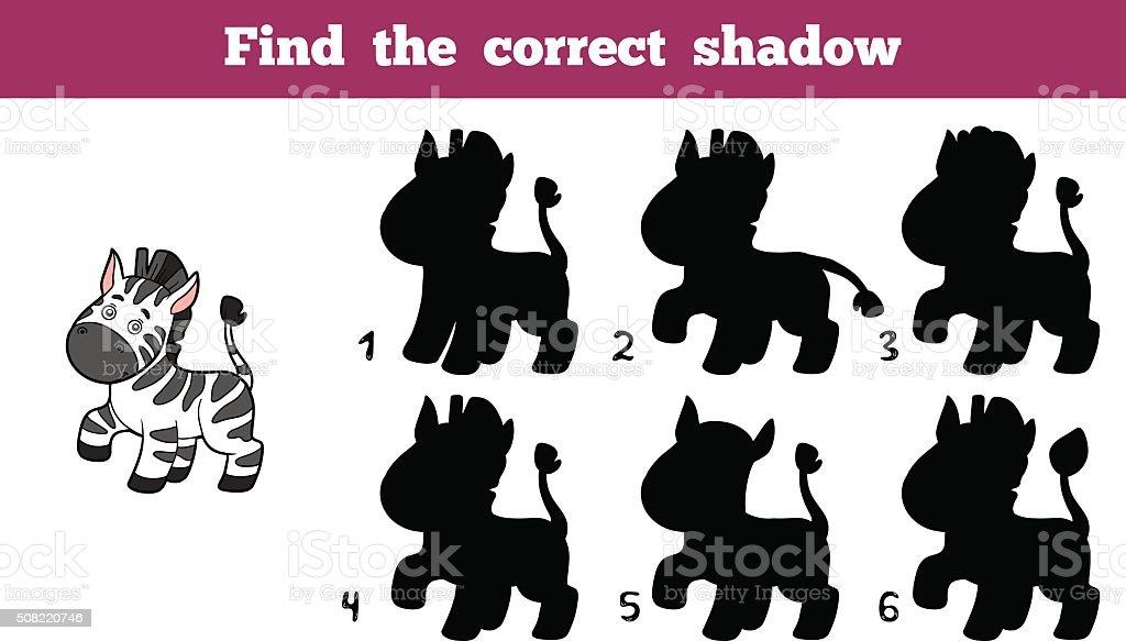 Find the correct shadow (zebra)