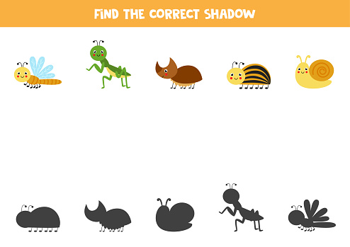 Find the correct shadows of cute insects. Logical puzzle for kids.