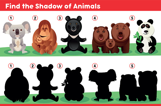 Find the Shadow of Animals