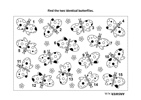 find the two identical butterflies visual puzzle and coloring page vector id