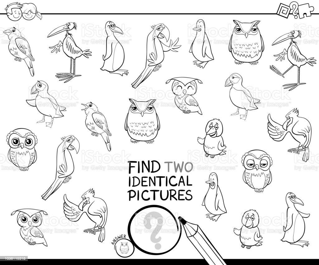 塗り絵 2 つの同一の鳥の写真を見つける お絵かきのベクターアート素材