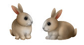 Cute little rabbits collection. Set of Fine Easter rabbits isolated on white background