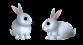 Cute little rabbits collection. Set of Fine white rabbits isolated on black background