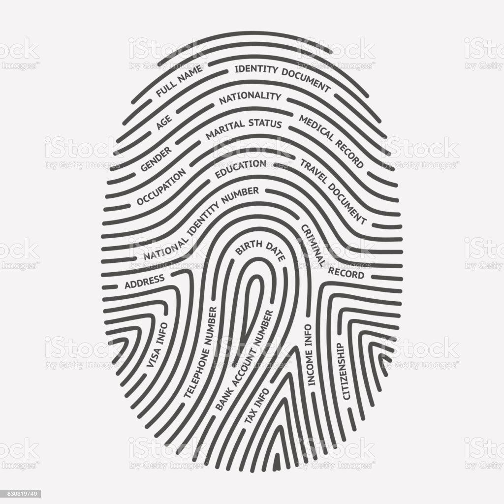 Fingerprint and personal information vector art illustration