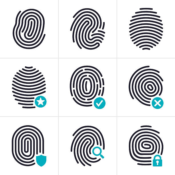 Fingerprint Identity and Security Symbols Fingerprint biometric and identity security symbol and icon collection. EPS 10 file. Transparency effects used on highlight elements. crime scene stock illustrations