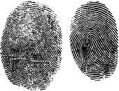 Vector fingerprints maintaining natural faultlines and inconsistencies.